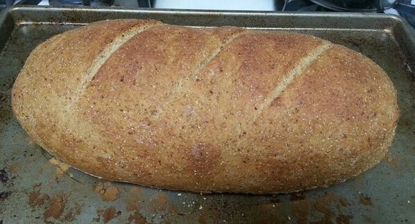 Rye bread on a baking sheet, cooling.